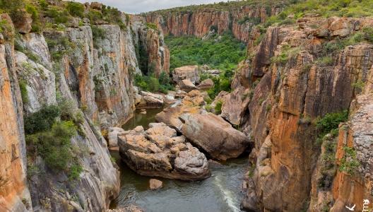 Südafrika 2017/18 – Ankunft/Reise zum Krüger Nationalpark